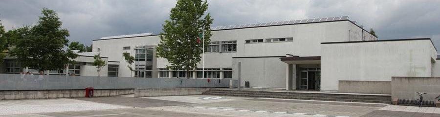 Primaria Berlingo